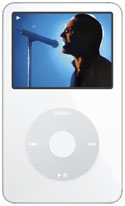 The new video iPod